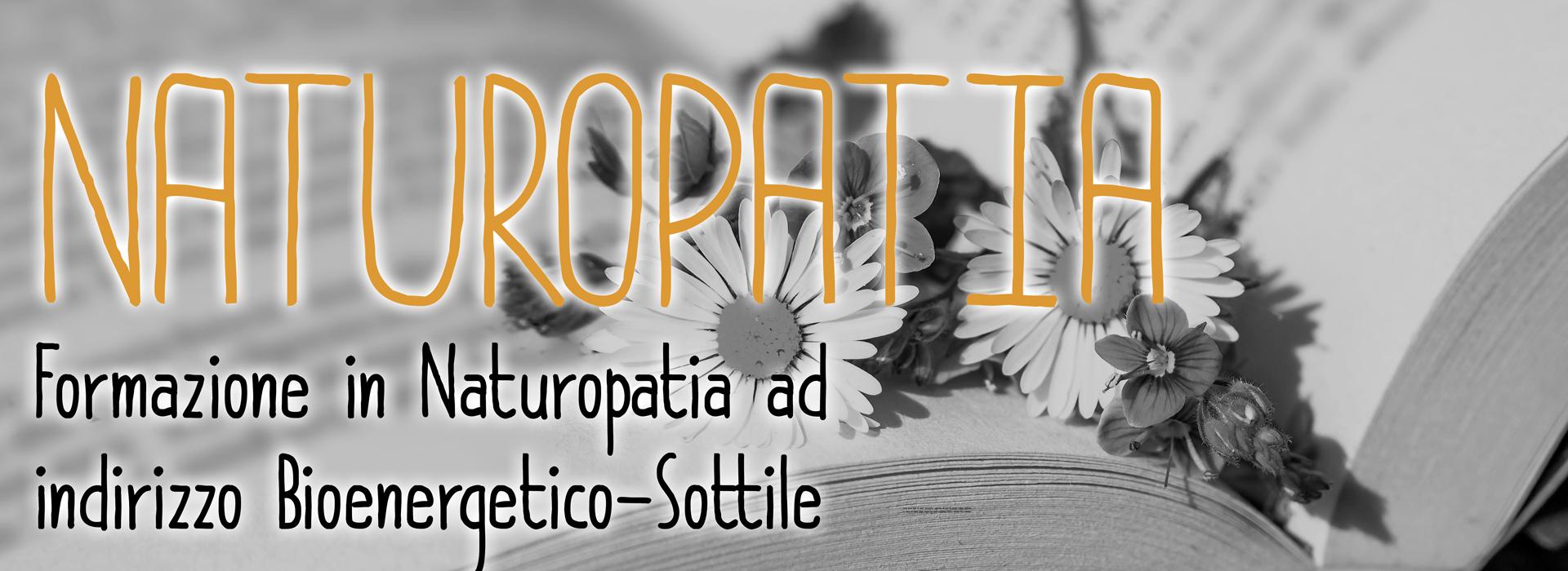 Corsi di Naturopatia accademia olistica università scuola hamors Jesolo san donà di piave veneto italiana certificata ufficiale